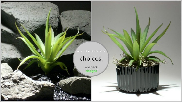 choices from ron beck designs