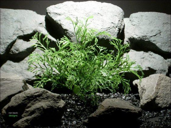 plastic aquarium plants dill grass pap078 ron beck designs