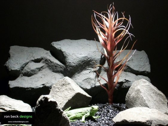 reptile habitat plants agave mellon red prp006 ron beck designs