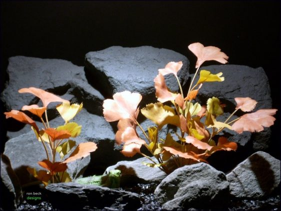 silk reptile habitat plants ginko leaves falls srp068 ron beck designs