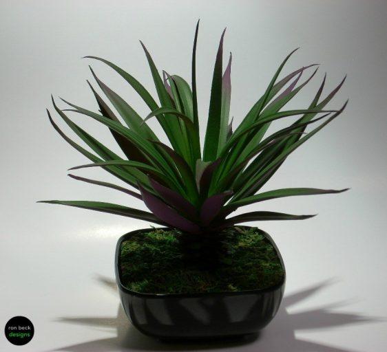 home decor succulent ron beck designs #hd001