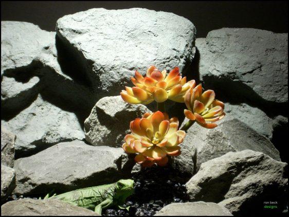 plastic reptile decor succulent prs106 by ron beck designs