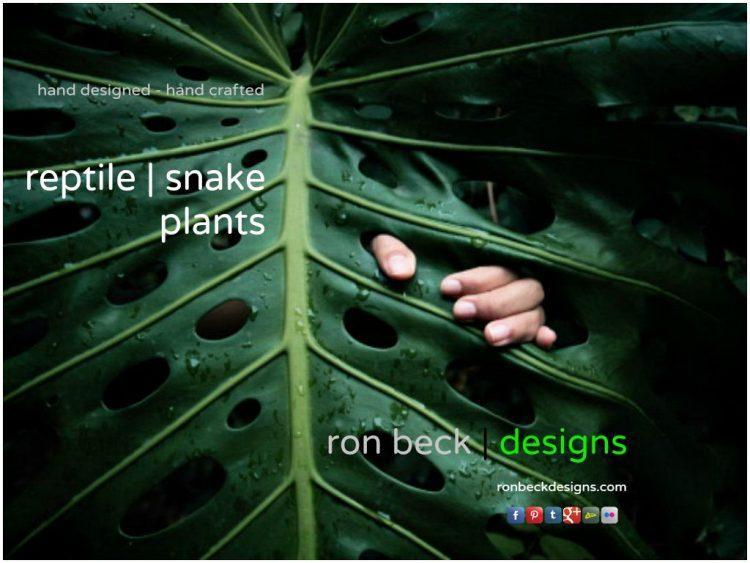 reptile plants snake habitat plants by ron beck designs | ronbeckdesigns.com