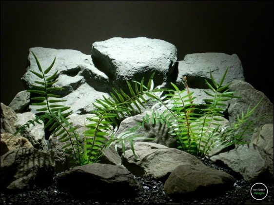 plastic reptile plants: boston fern prp158 from ron beck designs.