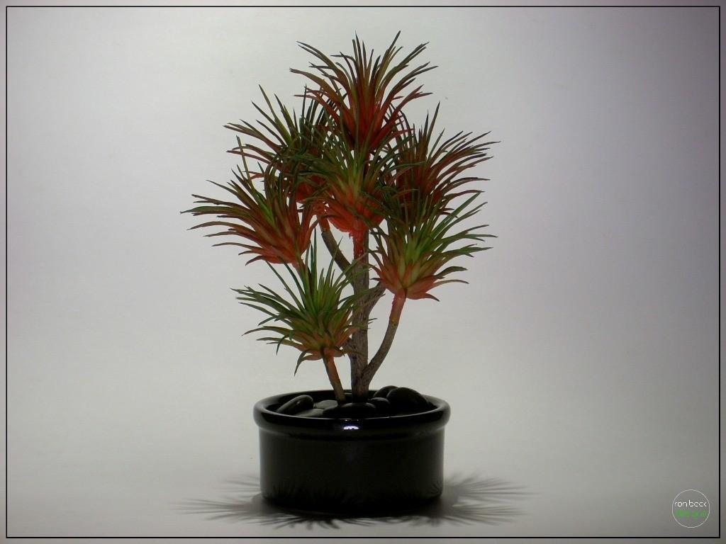 Artificial Succulent   Home Decor prs259