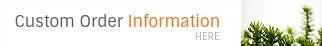 Custom Order Information - Ron beck Designs