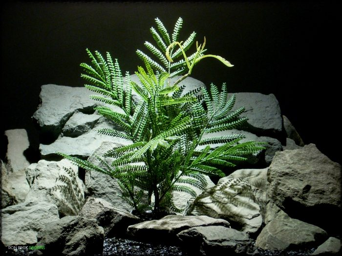 Artificial Mimosa Leaf Spray - Artificial Reptile Plant - Ron Beck Designs prp322