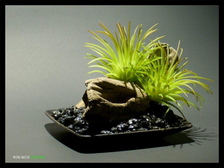 1 Scape - Artificial Reptile Decor - Home Decor - Driftwood - Succulents