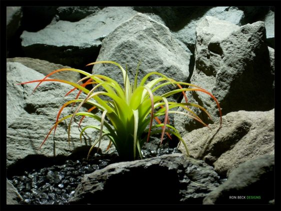 Artificial Spider Agave - Red Tips - Artificial Reptile Habitat Plant - prp335