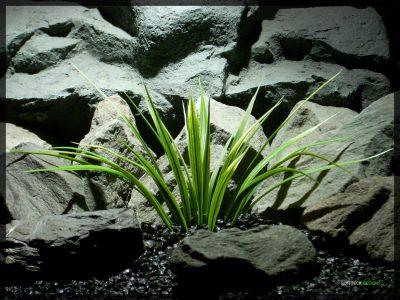 Artificial Green Leaf Blades - Artificial Aquarium Plant parp341