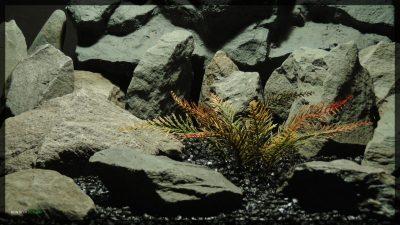 Artificial Spiked Fern - Artificial Aquarium Plant - parp360
