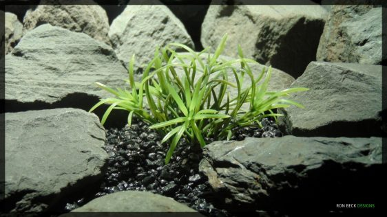 Artificial Variegated Matai Bush - Artificial Aquarium Plant - Ron Beck Designs PARP357