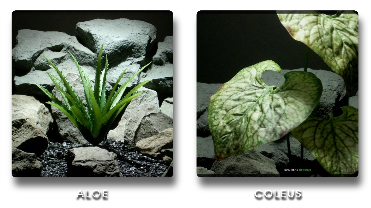 Reptile Tank Decor