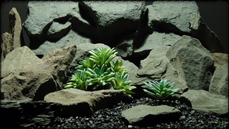Artificial Leatherpetal Succulent - Reptile Desert Habitat - prp370