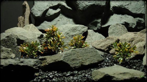 Artificial Matai - Woodland - Reptile Habitat Plant - prp365