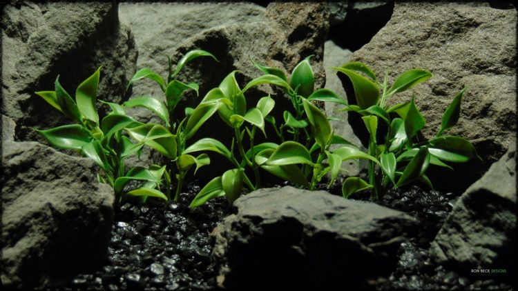 Greenery Leaf Plot - Real Touch - Artificial Reptile Habitat Plant - prp366