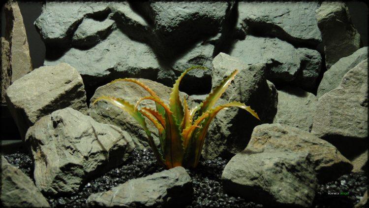 Artificial Aloe vaombe (Malagasy Tree Aloe) - Artificial Reptile Desert Decor Plant PRP37