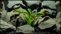 Artificial Venus Flytrap - Artificial Reptile Decor Plant - prp374