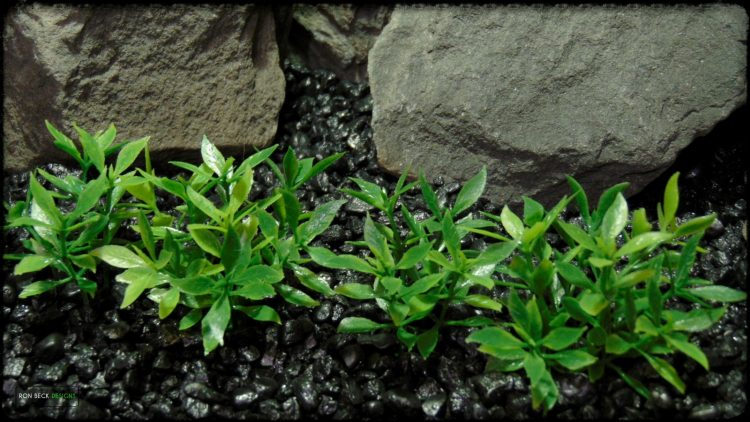 Artificial Dwarf Mini Leaves Plot Plastic Aquarium Plant - parp388 2