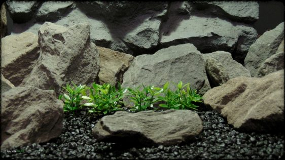 Artificial Dwarf Mini Leaves Plot Plastic Aquarium Plant - parp388