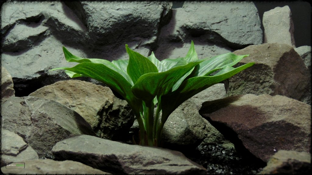 Artificial Silk Hosta Leaves - Silk Reptile Terrarium Plants - SRP392