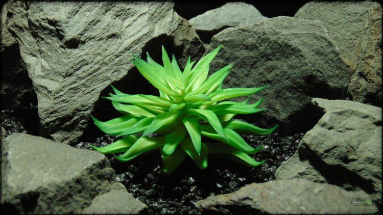 Artificial Fire Echeveria - Reptile Habitat plant Succulent - PRP394 3