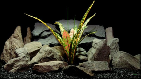 Artificial Croton Bush - Silk Reptile Habitat Plant - Ron Beck Designs srp397 (1)