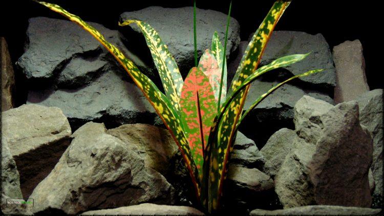 Artificial Croton Bush - Silk Reptile Habitat Plant - Ron Beck Designs srp397 2