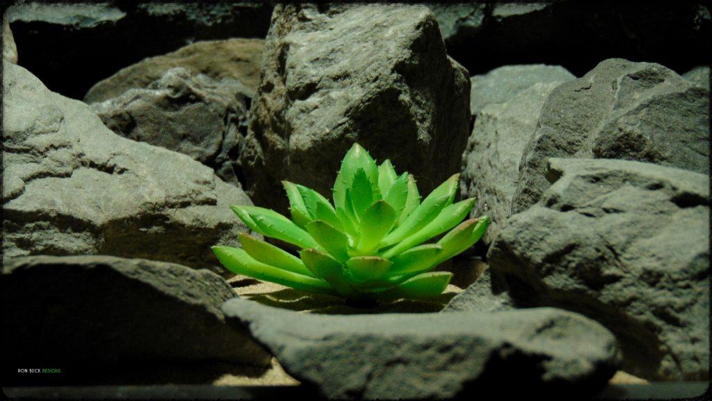 Artificial Echeveria elegans Succulent - Desert Reptile Decor Plant prp398