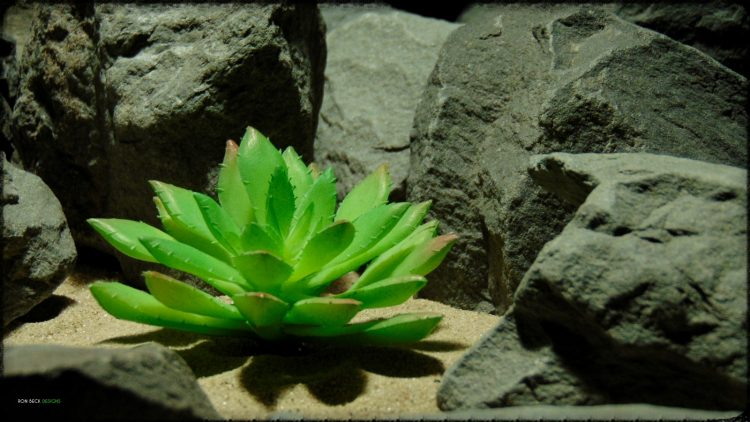 Artificial Echeveria elegans Succulent - Desert Reptile Decor Plant prp398 2