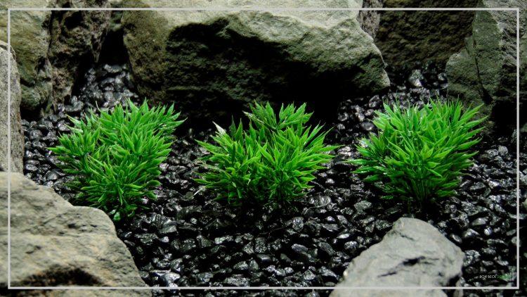 Artificial Podocarpus Grass Plot - Reptile Terrarium Habitat Plant - PARP402 1920 1080 3