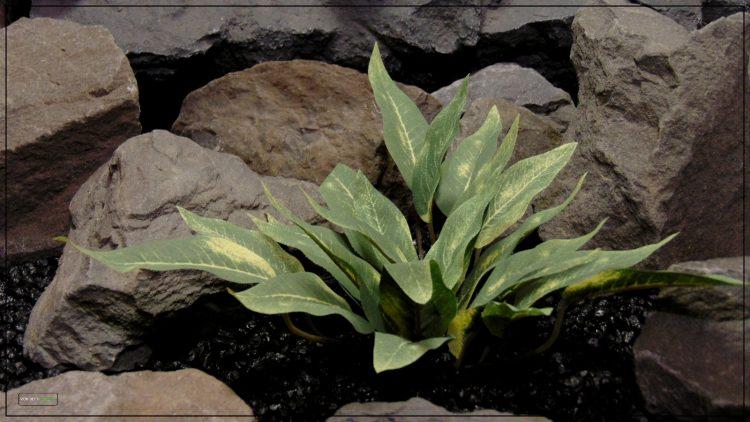 Artificial Silk Reptile Terrarium Plant - Ron Beck Designs srp400 2