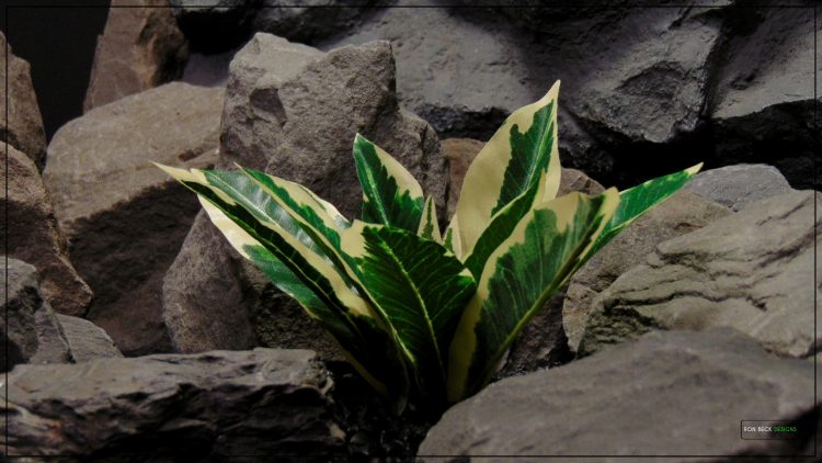 Artificial Silk Winter Daphne - Reptile terrarium Habitat Plant - Ron Beck Designs srp399 2
