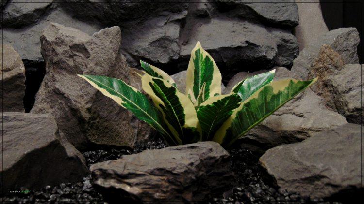 Artificial Silk Winter Daphne - Reptile terrarium Habitat Plnt - Ron Beck Designs srp399
