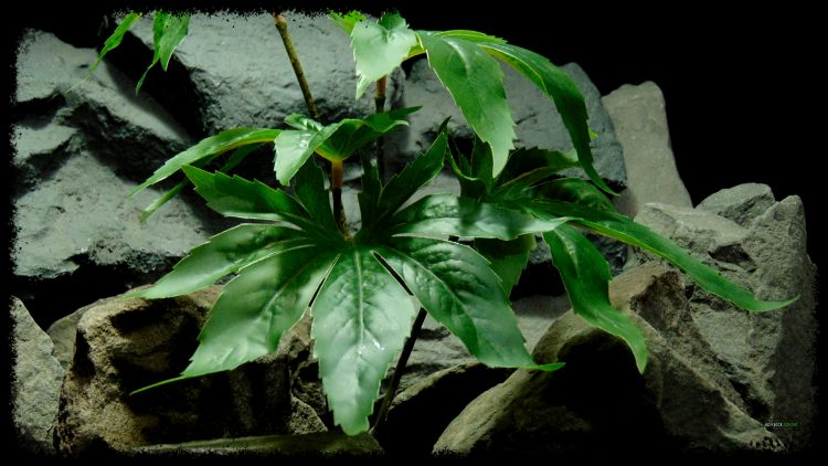Artificial Canibus Plant - Silk Reptile Terrarium Plant - SRP405 3