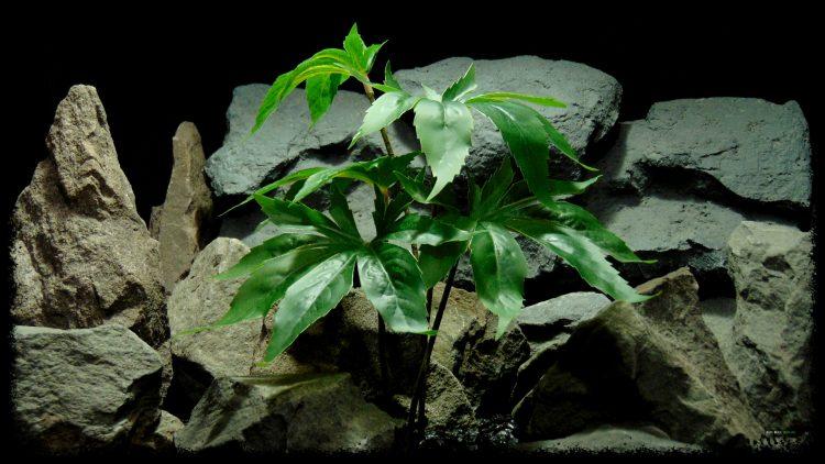 Artificial Canibus Plant - Silk Reptile Terrarium Plant - SRP405