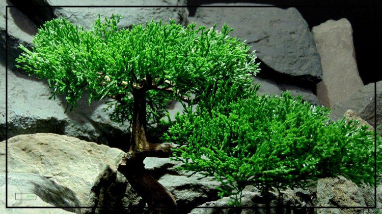 Artificial Cedar Bonsai - Reptile Terrarium Plant - Ron Beck Designs - prp408 2