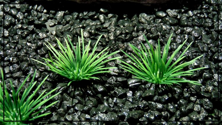 Artificial Urchin Grass Plot - Artificial Aquarium Plants - parp412 3