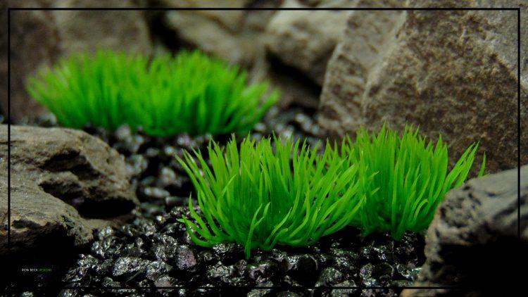 Artificial Aquarium Plant - Moss Grass Soft Touch - parp422 2