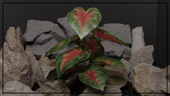 Artificial Dasheen (Red) - Silk Reptile terrarium Plant - srp409