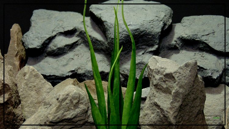 Artificial Soft Grass - Reptile Habitat or Home Decor Plant - prp419 2