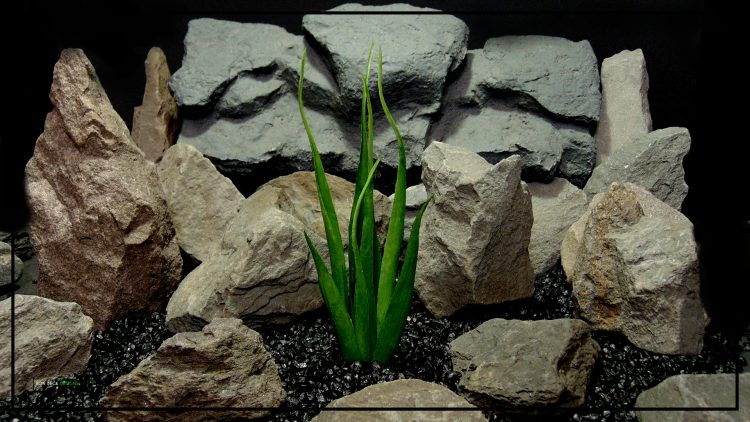 Artificial Soft Grass - Reptile Habitat or Home Decor Plant - prp419 5