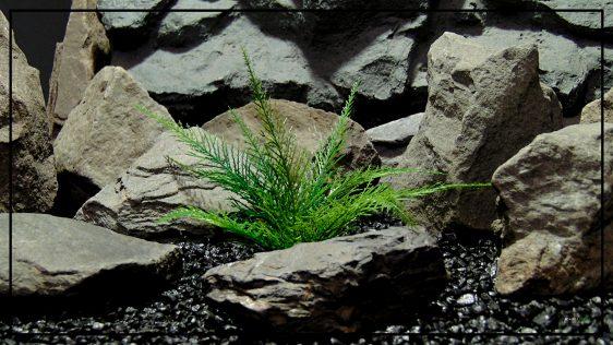 Artificial Spiked Fern - Aquarium or Reptile Terrarium Plant parp417 (1)