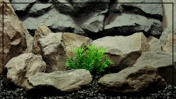 Spiky Bush - Artificial Aquarium Decor Plant - parp420