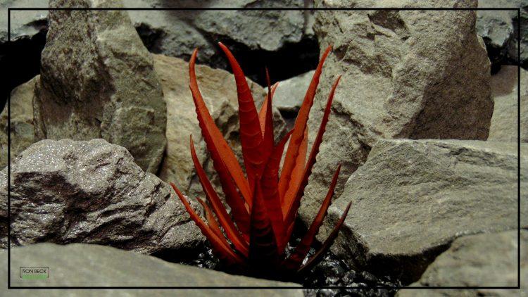 Artificial Aloe Plant (Burnt Apple Red) - Artificial Reptile Desert Habitat Plant prp423 2