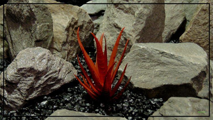 Artificial Aloe Plant (Burnt Apple Red) - Artificial Reptile Desert Habitat Plant prp423 3