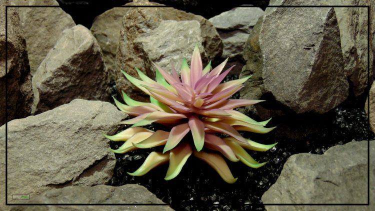 Artificial Echeveria (Plum Green) – Reptile Habitat Plant Succulent 3 prp425