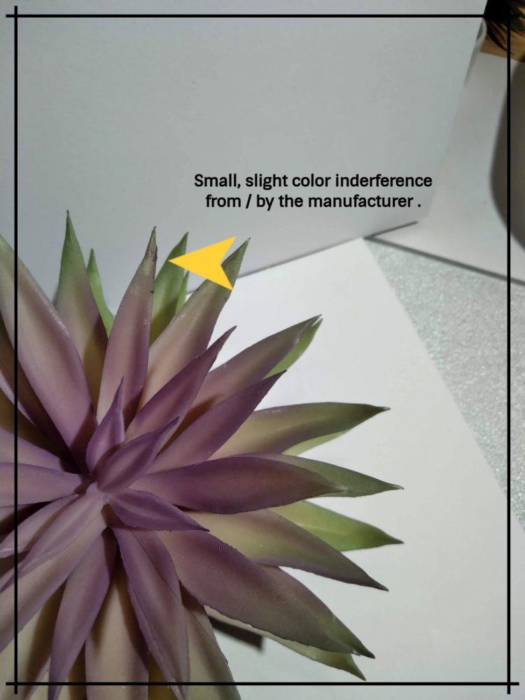Artificial Echeveria (Plum Green) – Reptile Habitat Plant Succulent 4