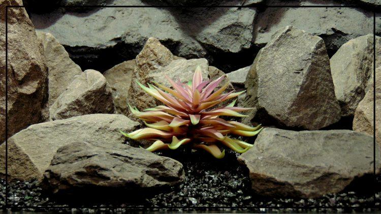 Artificial Echeveria (Plum Green) – Reptile Habitat Plant Succulent prp425