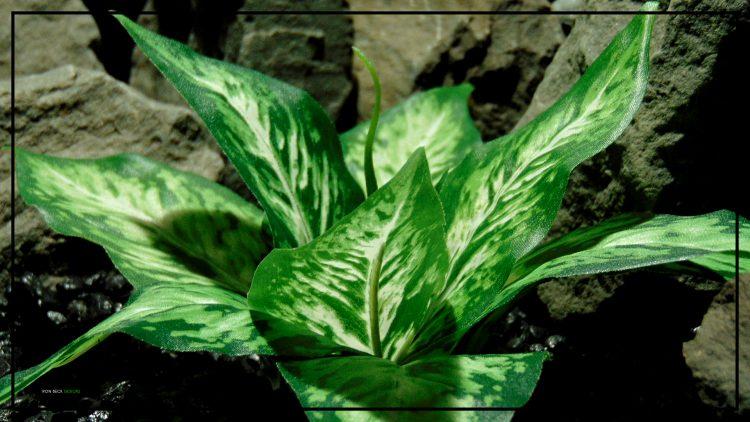 Artificial Silk Green Cream Leaves - Reptile Decor Artificial Plant srp424 3